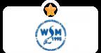WSM Warsaw Management Universit
