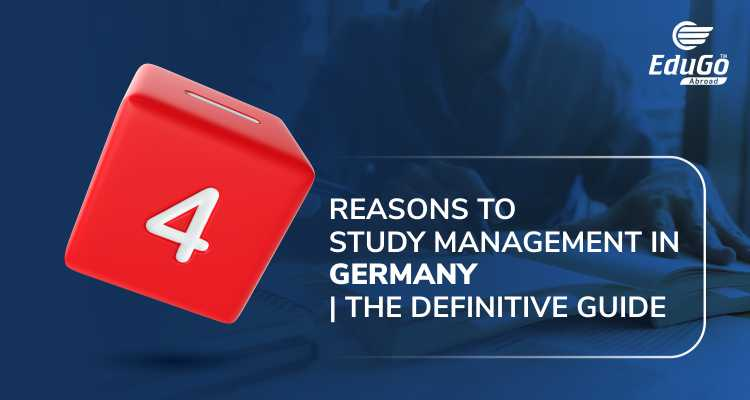 4 Reasons To Study Management In Germany The Definitive Guide