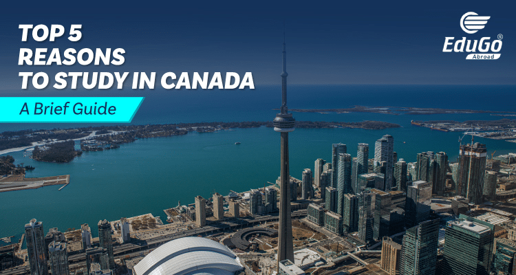 Top 5 Reasons to Study in Canada – A Brief Guide